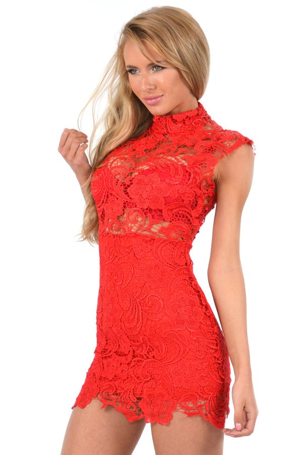 elegant red lace dresses photo - 1